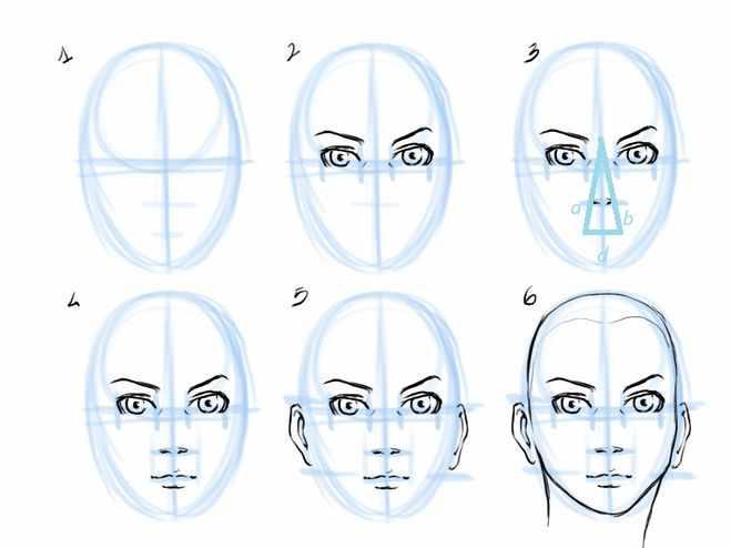 Прорисовка лица