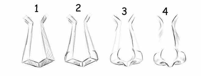 Прорисовка носа