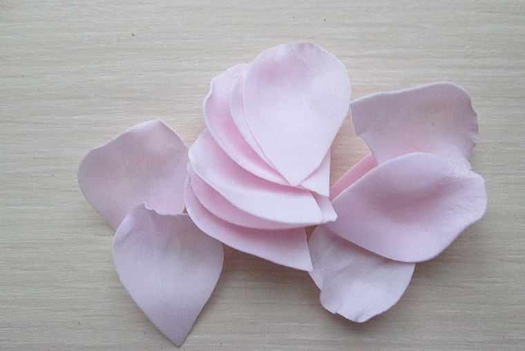 готовые лепестки розы